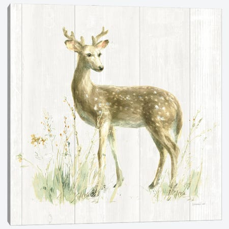 Meadows Edge III on Wood Canvas Print #NAI261} by Danhui Nai Canvas Art Print