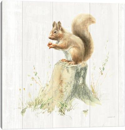 Meadows Edge VI on Wood Canvas Art Print