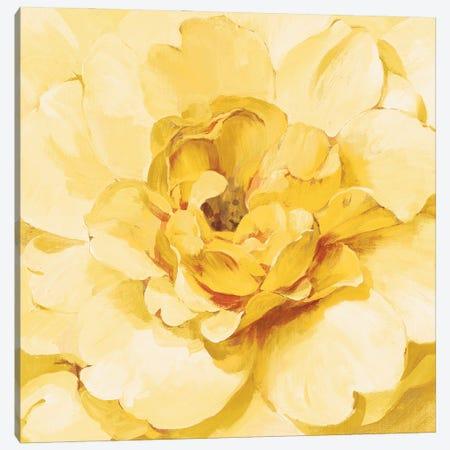 Yellow Peony Canvas Print #NAI289} by Danhui Nai Art Print