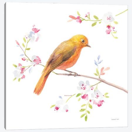 Flight Friends III Canvas Print #NAI332} by Danhui Nai Art Print