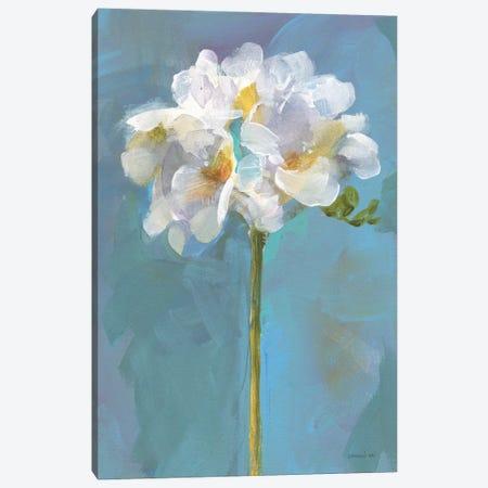 Modern Floral IV Canvas Print #NAI341} by Danhui Nai Canvas Art