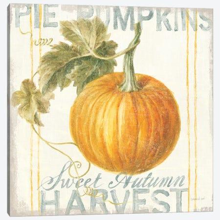 Floursack Autumn VI Canvas Print #NAI38} by Danhui Nai Canvas Print