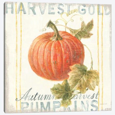 Floursack Autumn VIII Canvas Print #NAI40} by Danhui Nai Canvas Art