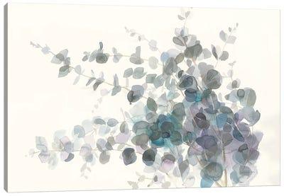 Scented Sprig I Canvas Art Print