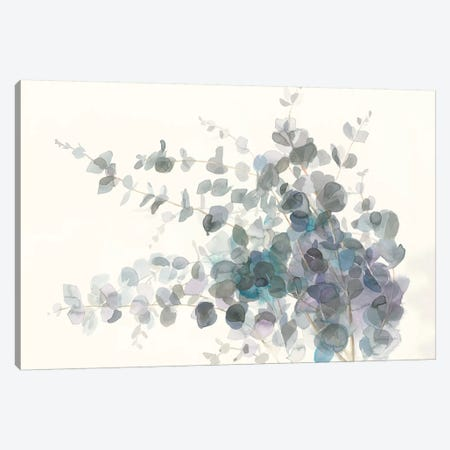 Scented Sprig I Canvas Print #NAI5} by Danhui Nai Canvas Print