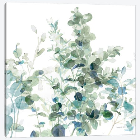Eucalyptus I Cool Canvas Print #NAI60} by Danhui Nai Canvas Wall Art
