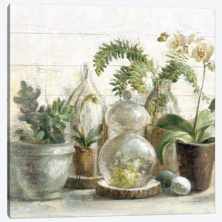 Greenhouse Orchids on Shiplap Crop Canvas Print #NAI68} by Danhui Nai Canvas Art
