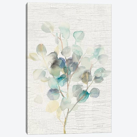 Eucalyptus III Vintage Canvas Print #NAI83} by Danhui Nai Canvas Art