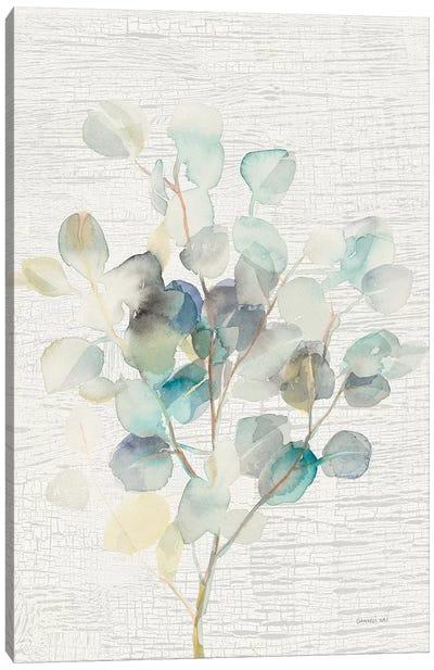 Eucalyptus III Vintage Canvas Art Print