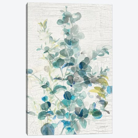 Eucalyptus IV Vintage Canvas Print #NAI84} by Danhui Nai Canvas Print