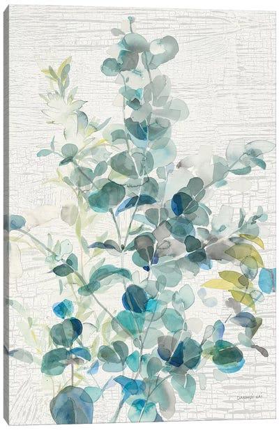 Eucalyptus IV Vintage Canvas Art Print
