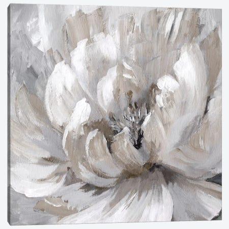 Burst Of Spring Canvas Print #NAN100} by Nan Art Print
