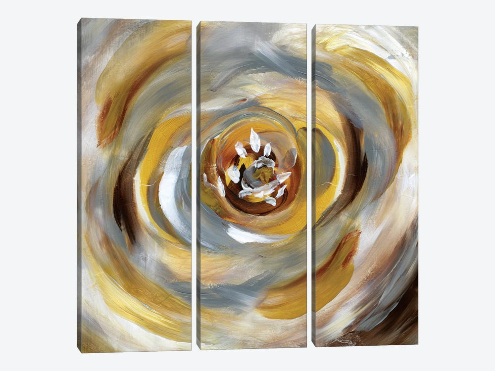 Emboldened Bloom by Nan 3-piece Canvas Artwork