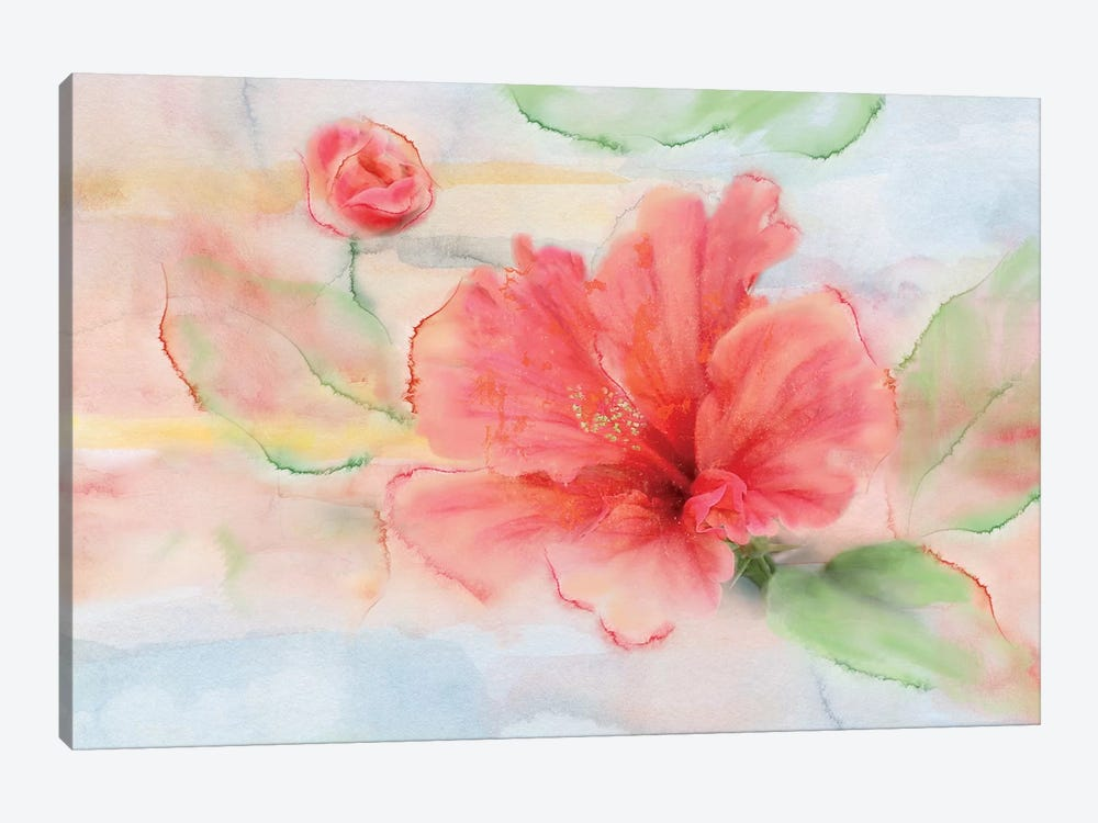 Hibiscus by Nan 1-piece Canvas Art
