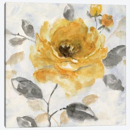 Honey Rose I Canvas Print #NAN117} by Nan Art Print
