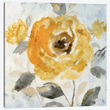 Honey Rose II Canvas Print #NAN118} by Nan Canvas Artwork