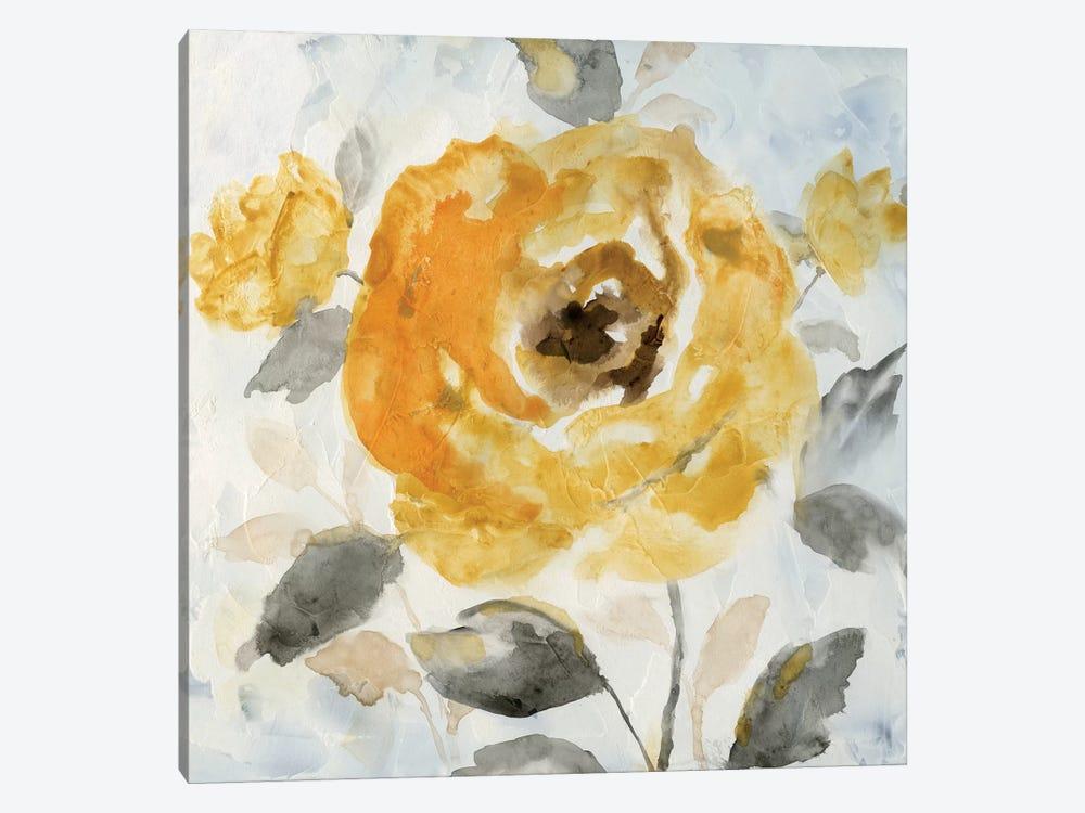 Honey Rose II by Nan 1-piece Canvas Wall Art