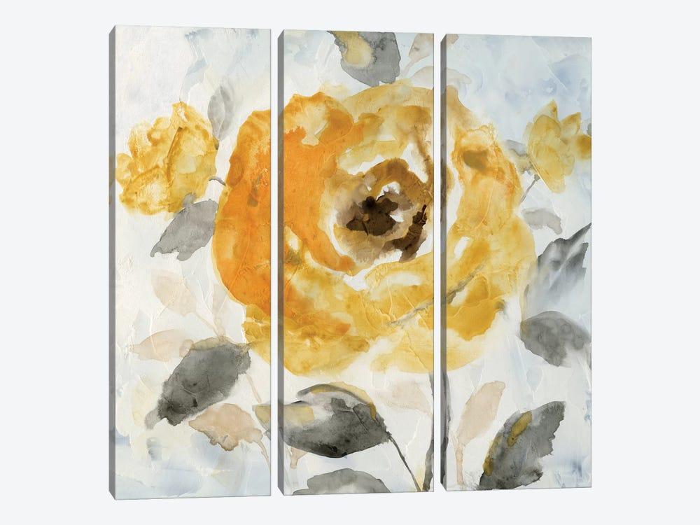 Honey Rose II by Nan 3-piece Canvas Art