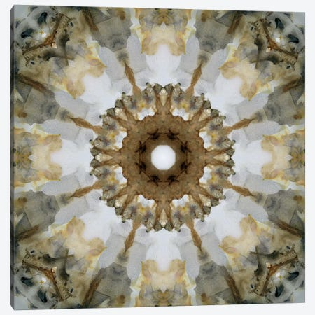 Kaleidoscope Honey Gray Agate Canvas Print #NAN122} by Nan Art Print
