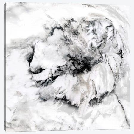 Marble Flower II Canvas Print #NAN127} by Nan Canvas Art