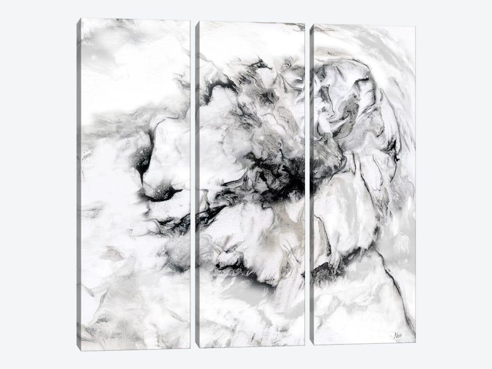 Marble Flower II by Nan 3-piece Canvas Artwork