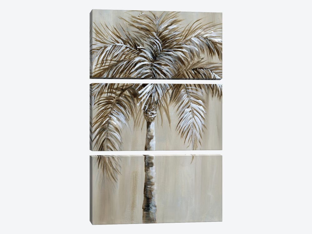 Palm Magic I by Nan 3-piece Canvas Art Print
