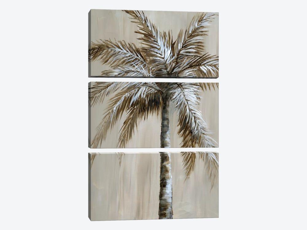Palm Magic II by Nan 3-piece Canvas Wall Art