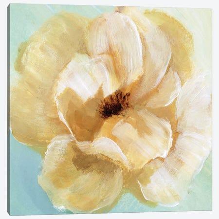 Soft Sunday II Canvas Print #NAN150} by Nan Canvas Art