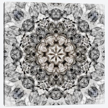 Black White Kaleidoscope I Canvas Print #NAN162} by Nan Canvas Print