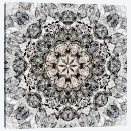 Black White Kaleidoscope I Canvas Print #NAN162} by Nan Canvas Print