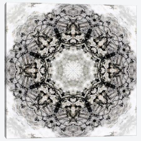 Black White Kaleidoscope II Canvas Print #NAN163} by Nan Art Print