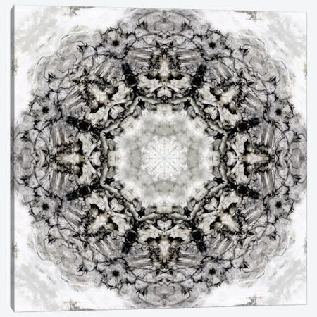 Black White Kaleidoscope II Canvas Print #NAN163} by Nan Art Print