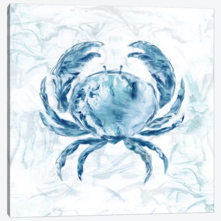 Blue Marble Coast Crab Canvas Print #NAN165} by Nan Canvas Artwork