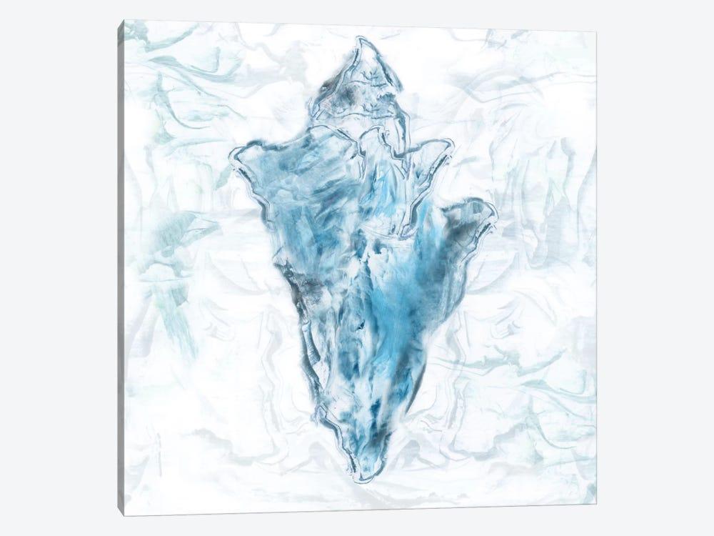 Blue Marble Coast Shell by Nan 1-piece Canvas Art Print