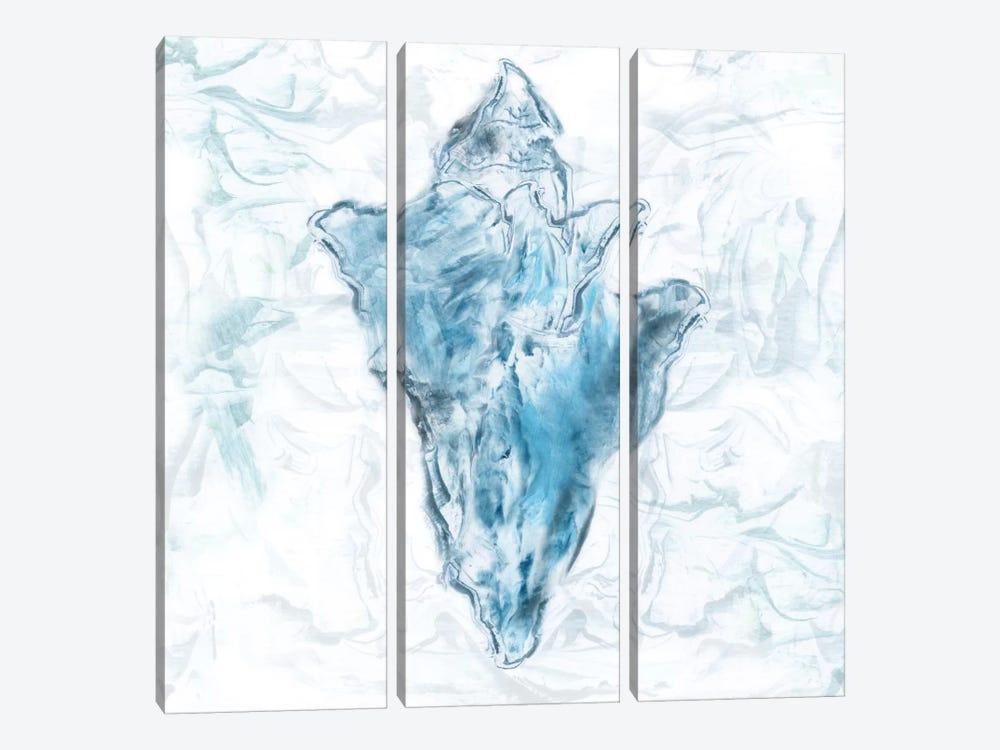 Blue Marble Coast Shell by Nan 3-piece Art Print