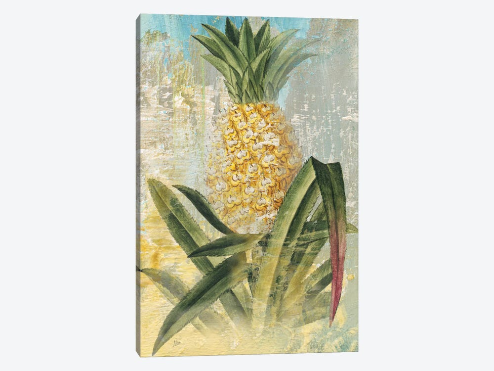 Botanical Pineapple by Nan 1-piece Canvas Art