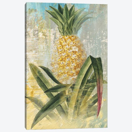 Botanical Pineapple Canvas Print #NAN169} by Nan Art Print