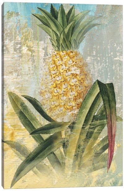 Botanical Pineapple Canvas Art Print