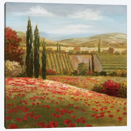 Tuscan Cypress I Canvas Print #NAN16} by Nan Art Print