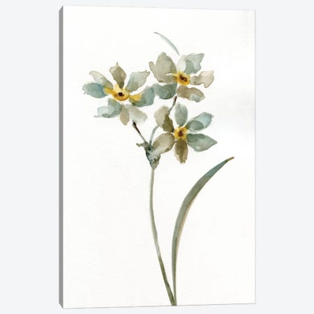 Neutral Botanical I Canvas Print #NAN187} by Nan Canvas Artwork