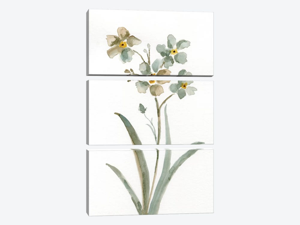 Neutral Botanical II by Nan 3-piece Canvas Print