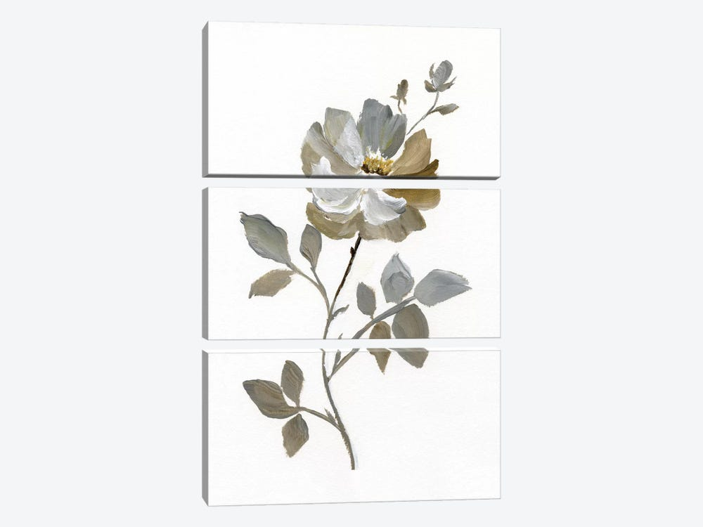 Neutral Rose I by Nan 3-piece Canvas Art
