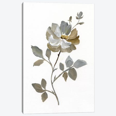 Neutral Rose I Canvas Print #NAN189} by Nan Canvas Print