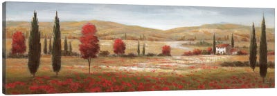 Tuscan Poppies I Canvas Print #NAN18