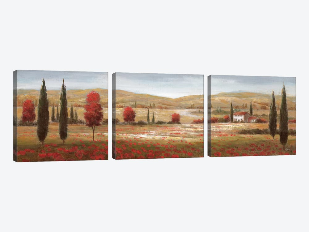 Tuscan Poppies I 3-piece Canvas Art Print