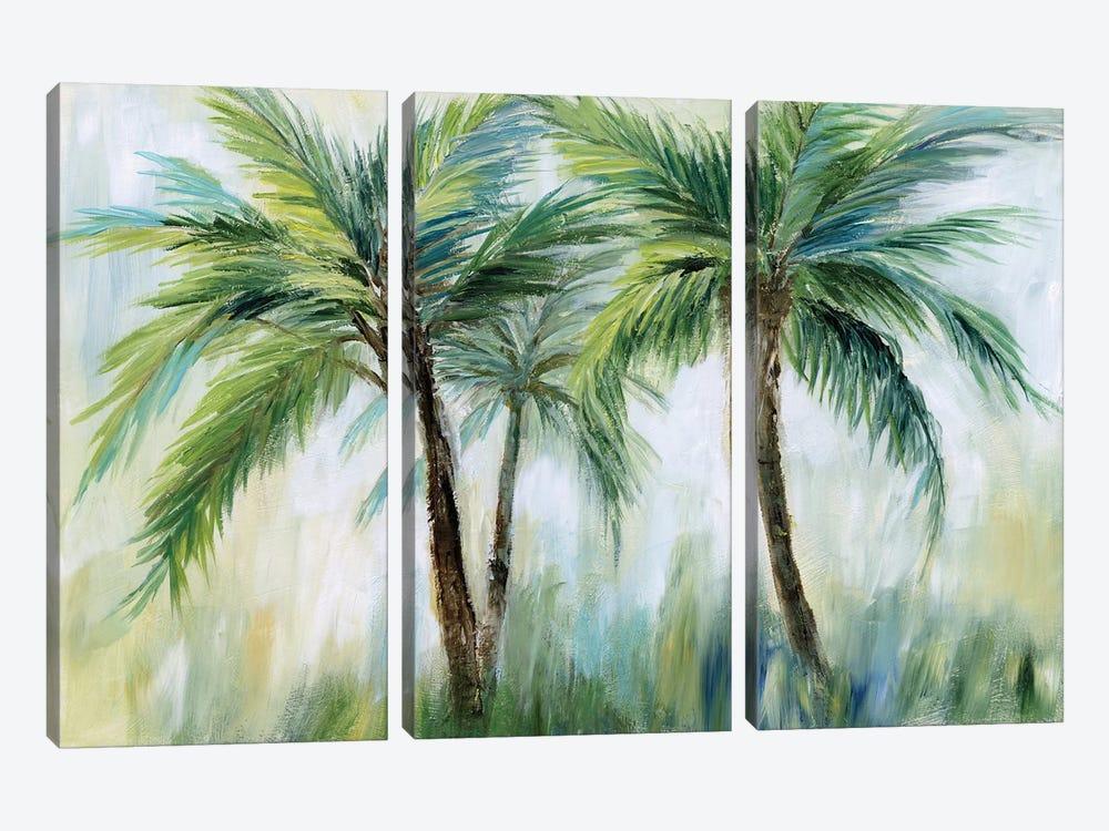 Palm Sensation by Nan 3-piece Canvas Print