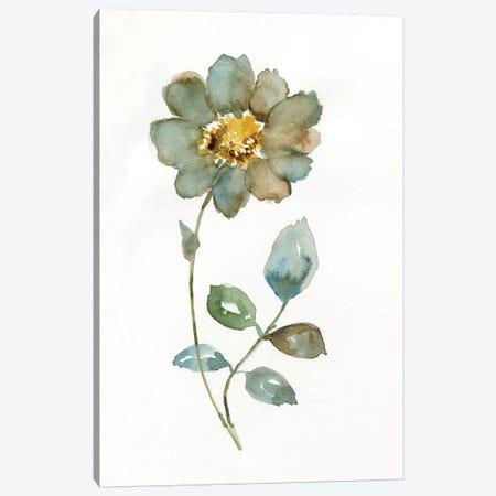 Simple Petals I Canvas Print #NAN194} by Nan Art Print