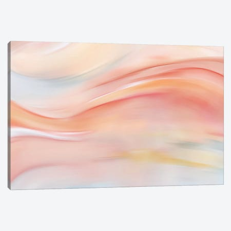 Soft Harmony Canvas Print #NAN198} by Nan Canvas Wall Art