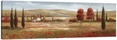 Tuscan Poppies II Canvas Print #NAN19