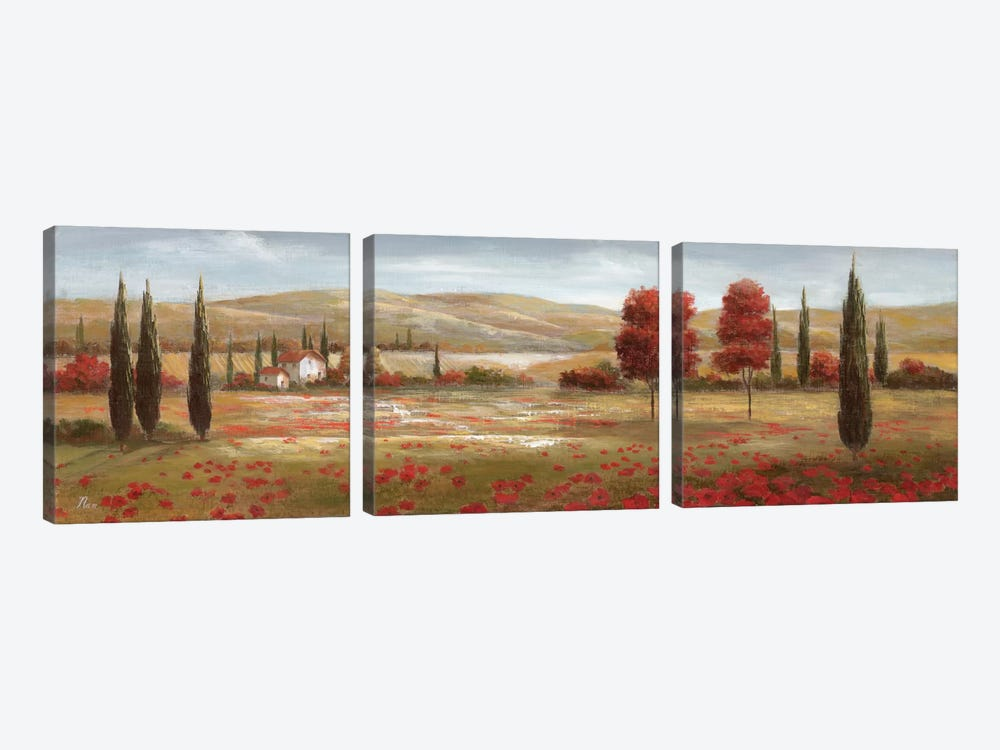 Tuscan Poppies II by Nan 3-piece Canvas Wall Art